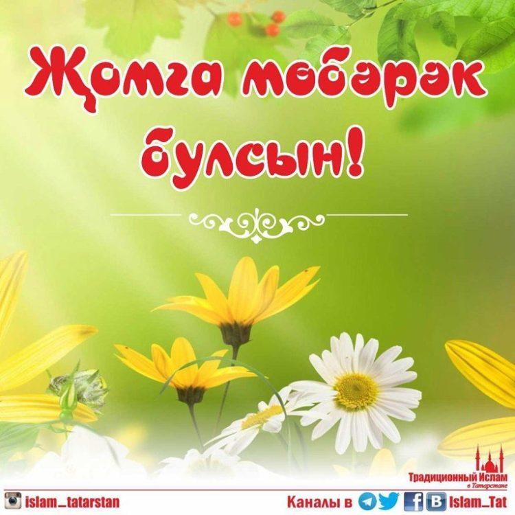 image-13-750×750